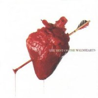 <i>The Best of The Wildhearts</i> 1996 greatest hits album by The Wildhearts