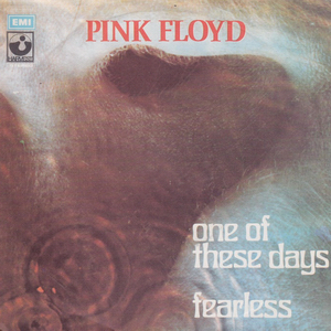 Fearless (Pink Floyd song) song by Pink Floyd