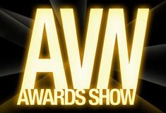 24th AVN Awards