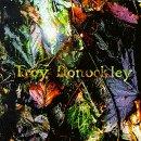 <i>The Unseen Stream</i> 1998 studio album by Troy Donockley