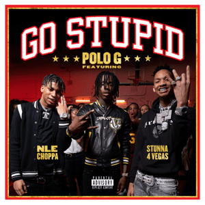 Go Stupid 2020 song by Polo G, Stunna 4 Vegas, NLE Choppa featuring Mike Will Made It