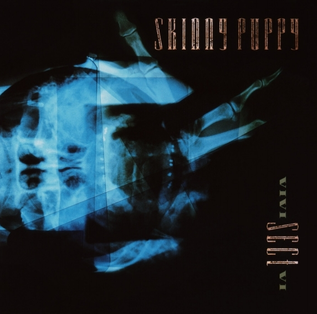 <i>VIVIsectVI</i> album by Skinny Puppy