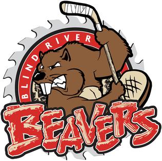 blind river beavers wikipedia