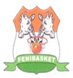 Niger mens national basketball team