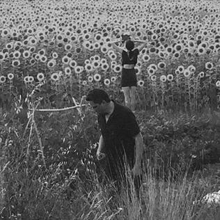 <i>Jesu/Sun Kil Moon</i> 2016 studio album by Jesu and Sun Kil Moon