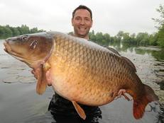 Benson (fish) carp