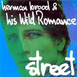 <i>Street</i> (Herman Brood & His Wild Romance album) 1977 studio album by Herman Brood & His Wild Romance