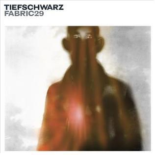 <i>Fabric 29</i> 2006 compilation album by Tiefschwarz