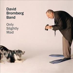 <i>Only Slightly Mad</i> 2013 studio album by David Bromberg Band