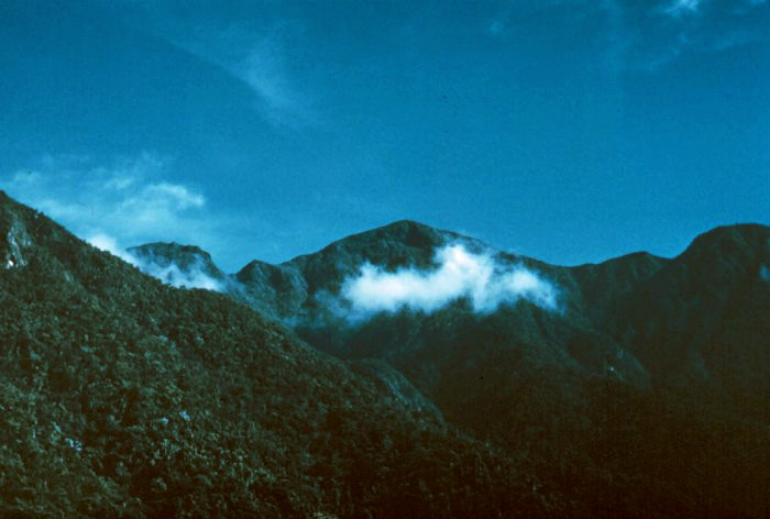 Pico Torquino in the Sierra Maestra, Cuba's highest mountain, 1974 meters
