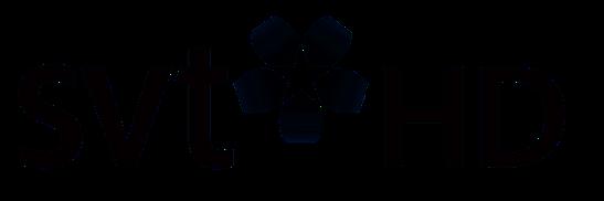 SVT HD - Wikipedia
