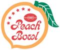 1981 Peach Bowl (January) annual NCAA football game