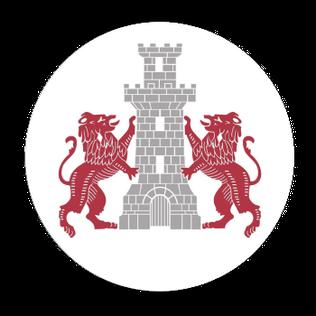 CS Dunărea Turris Turnu Măgurele Romanian association football club
