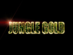 Гана jungle gold