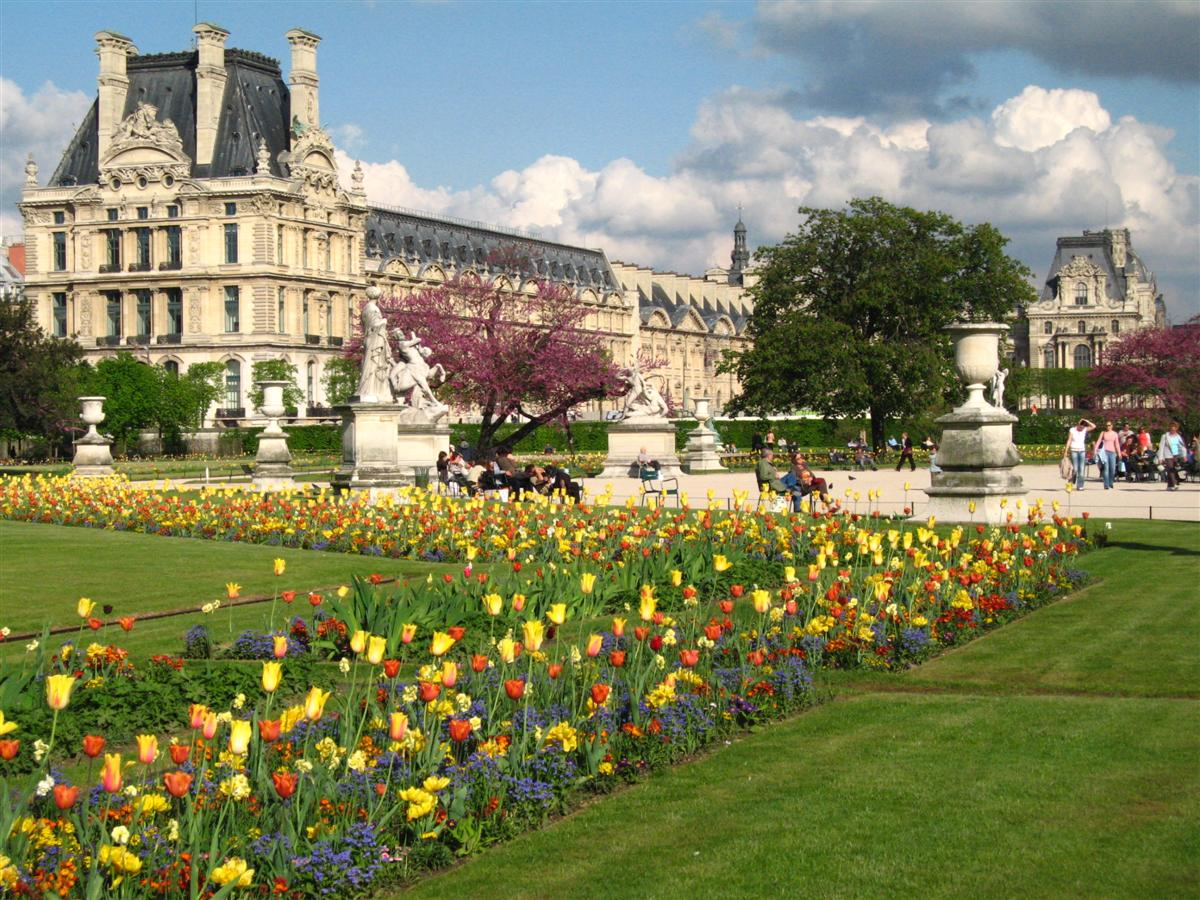 https://upload.wikimedia.org/wikipedia/en/e/e1/Mus%C3%A9e_du_Louvre_-_from_Jardin_des_Tuileres,_Paris,_France_(26_April_2006).JPG