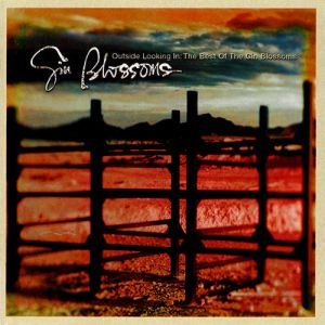 <i>Outside Looking In: The Best of the Gin Blossoms</i> 1999 greatest hits album by Gin Blossoms