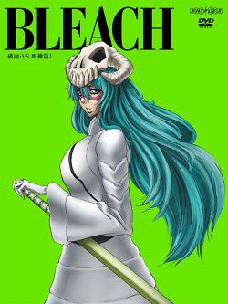 Bleach (season 10) - Wikipedia