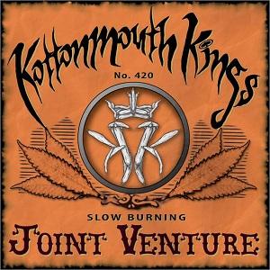Joint Venture (album)