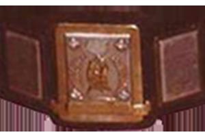 NWA Southern Junior Heavyweight Championship Professional wrestling championship
