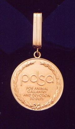 """Gold medal encircled in a laurel wreath and inscribed """"PDSA For animal gallantry and devotion to duty"""" held from a ring suspended by a golden ribbon."""