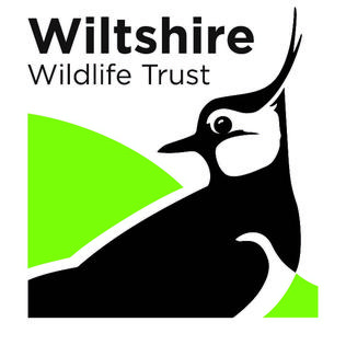 Wiltshire Wildlife Trust organization