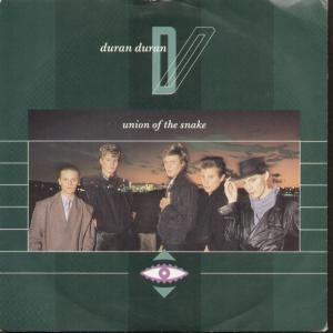 Union of the Snake 1983 song by Duran Duran