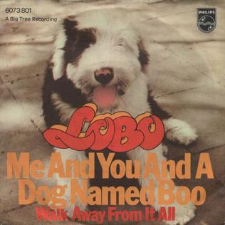Me and You and a Dog Named Boo 1971 single by Lobo