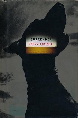 Image result for Surrender by Sonya Hartnett