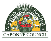Image result for cabonne lga Logo
