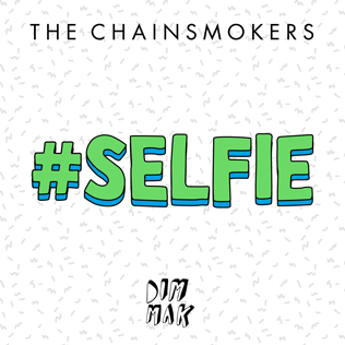 Selfie (song) 2014 single by the Chainsmokers