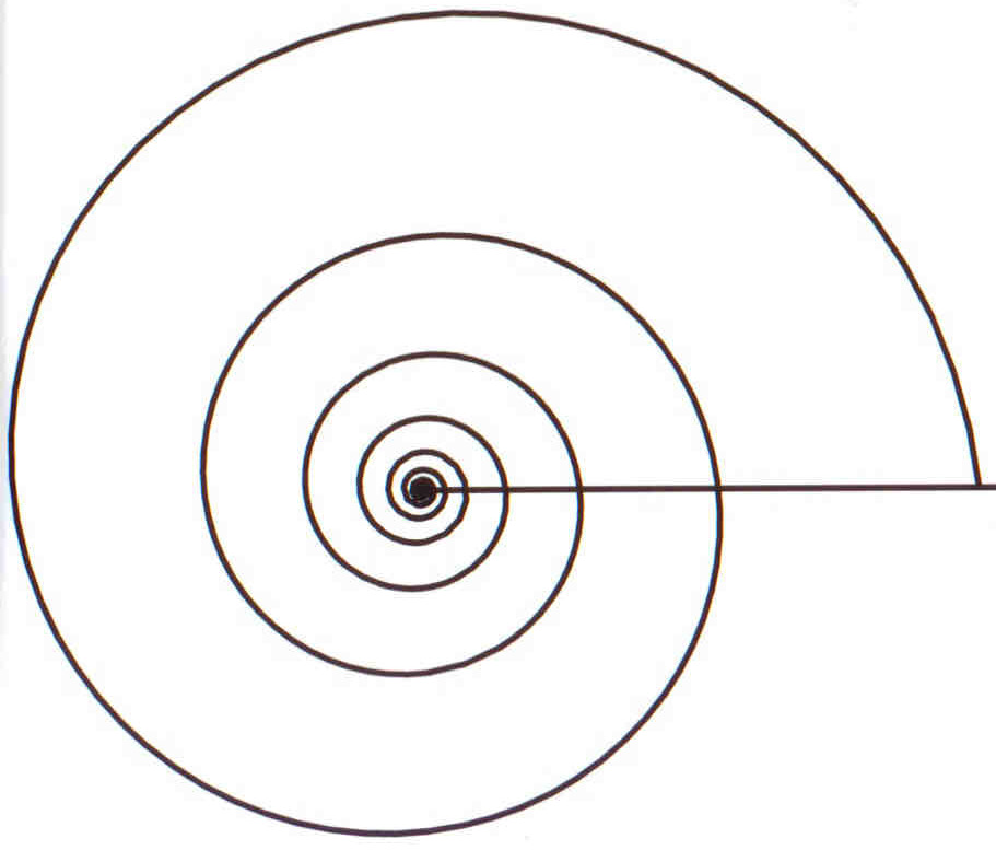 file logarithmic spiral png wikipedia