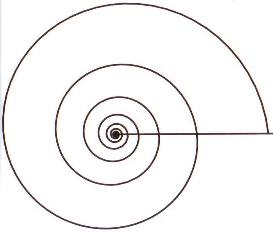 File:Logarithmic Spiral.png - Wikipedia