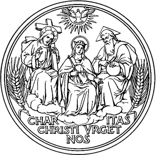 society of Apostolic Life within the Roman Catholic Church