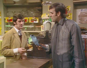 Dead Parrot sketch Monty Python sketch