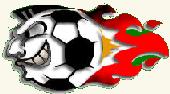 Palloiluseura Apollo Finnish football club