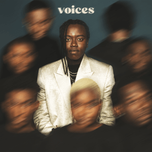 Voices (Tusse song)