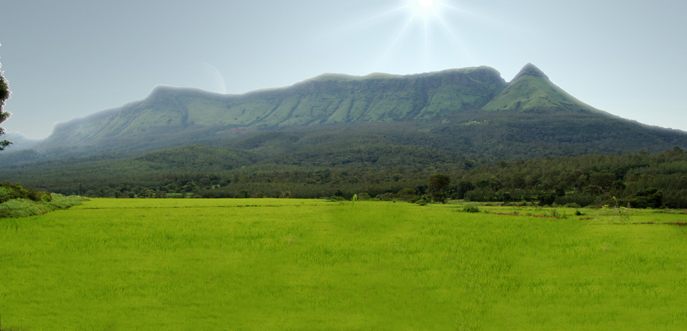 Pristine Beauty of Chikmagalur
