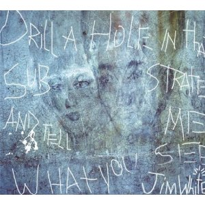 <i>Drill a Hole in That Substrate and Tell Me What You See</i> 2004 studio album by Jim White