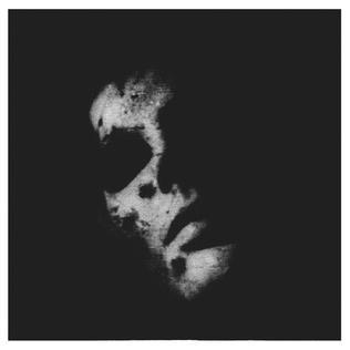 <i>Sister</i> (In Solitude album) 2013 studio album by In Solitude