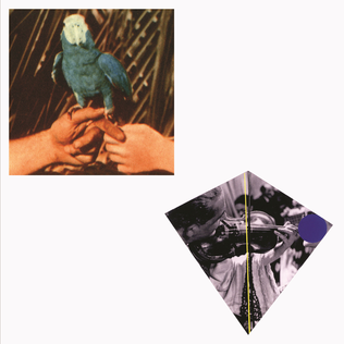 <i>Are You Serious</i> (Andrew Bird album) 2016 studio album by Andrew Bird