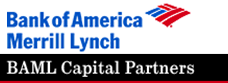 Bank of American Merrill Lynch Capital Partner...