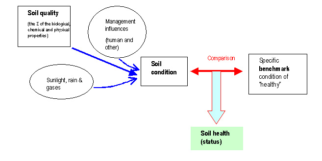 Conceptualisation for Physical properties of soil wikipedia
