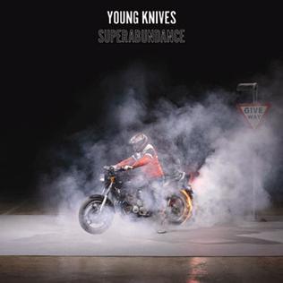 <i>Superabundance</i> 2008 studio album by Young Knives