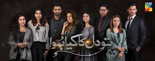 Shahid Tv