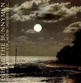 Cubra la imagen de la canción The Killing Moon por Echo & the Bunnymen