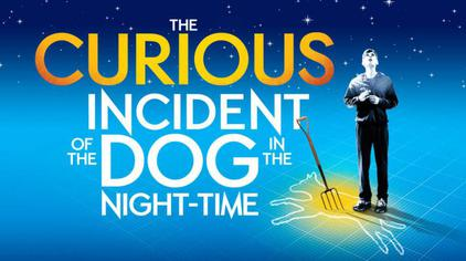 The Curious Incident of the Dog in the Night-Time (play).jpg