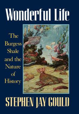 an examination of the book wonderful life the burgess shale and the nature of history by stephen jay Wonderful life: the burgess shale and the nature of history paperback – dec  26 2006  mismeasure of man by stephen jay gould paperback cdn$ 2068   contingent--as in the movie it's a wonderful life, from which this book takes its  title--has  of burgess shale and to those who have painstakingly examined  them.