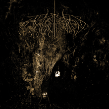 <i>Two Hunters</i> 2007 studio album by Wolves in the Throne Room