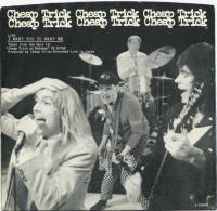 Cheap Trick I Want You to Want Me (1979).jpg