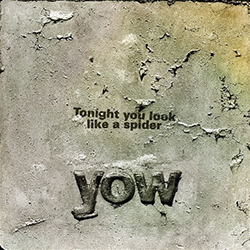 <i>Tonight You Look Like a Spider</i> 2013 studio album by David Yow